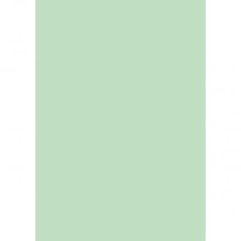 Fabriano Farbiges Papier COPY TINTA in A4, 80 g/m², Pack à 500 Blatt, pastell hellgrün