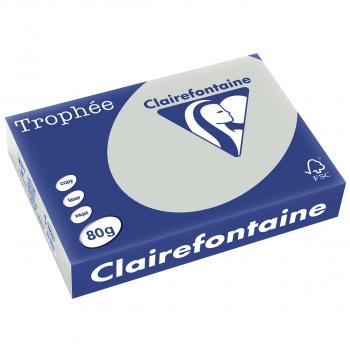 Trophée Kopierpapier farbig pastell A4, 80g/m2, Packung zu Blatt, grau