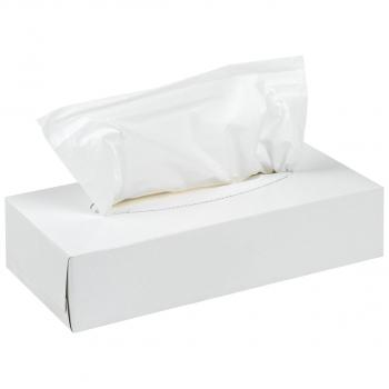 Mouchoirs cosmétiques 2 couches, extra-blanc, 20.5 x 21 cm, boîte de 100 pièces