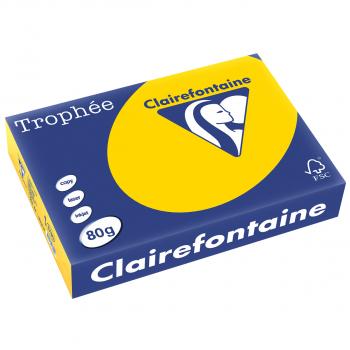 Trophée Kopierpapier farbig pastell A4, 80g/m2, Packung zu Blatt, goldgelb