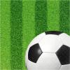 Stewo Servietten Fussball grün, 33 x 33 cm, Pack à 20 Stück